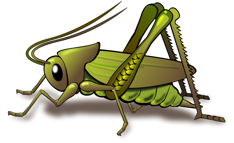 Free Cricket Clip Art