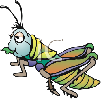 Cricket Insect Clipart - Clipart Kid