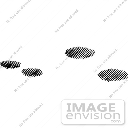 61640 Clipart Of Cottontail Rabbit Tracks In Snow In Black And White