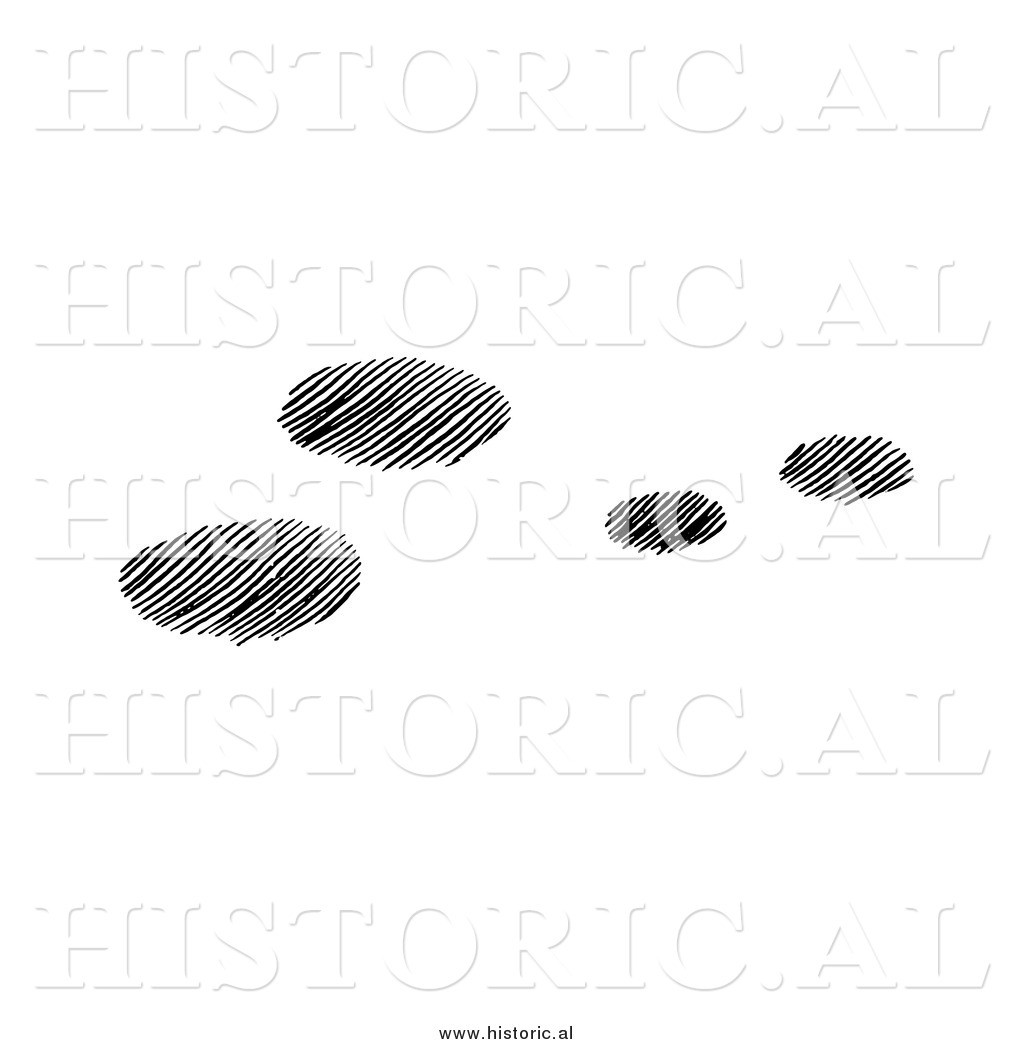 Clipart Of Four Snowshoe Rabbit Tracks In Snow   Black And White