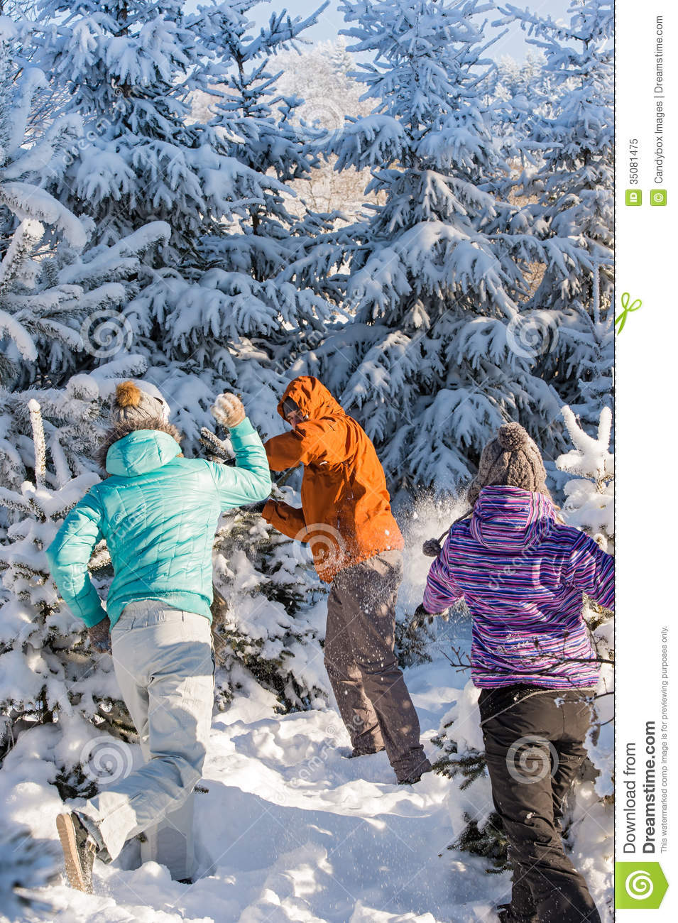Snowball Fight Winter Friends Having Fun Royalty Free Stock Photo
