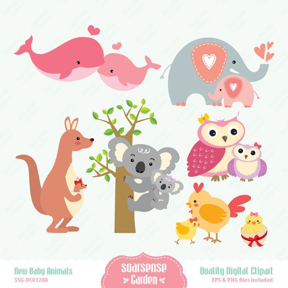 New Baby Animals Digital Clipart Baby Animals For Girl By Ssgarden  3