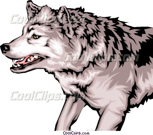 Animal Teeth On Growling Wolf With Mean Vector Clip Art