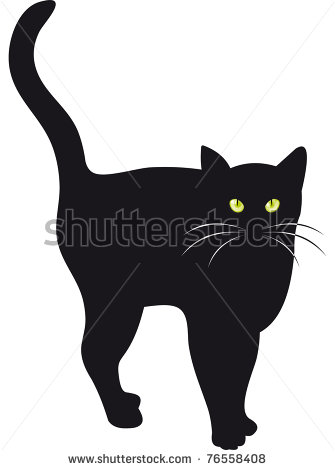 Cat Whiskers Stock Photos Images   Pictures   Shutterstock