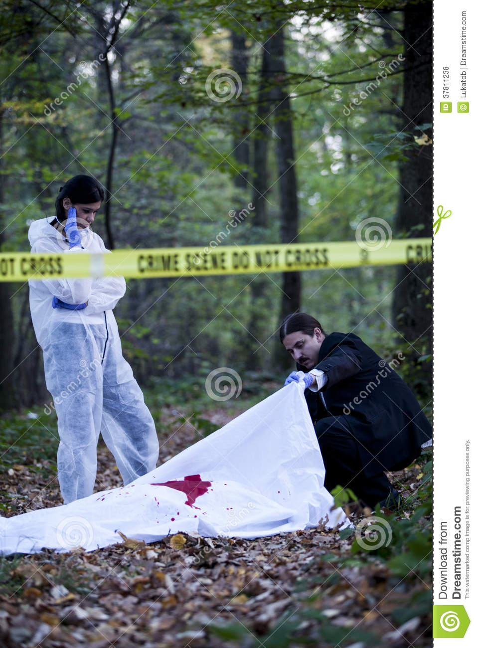 Crime Scene Investigation Royalty Free Stock Photos   Image  37811238
