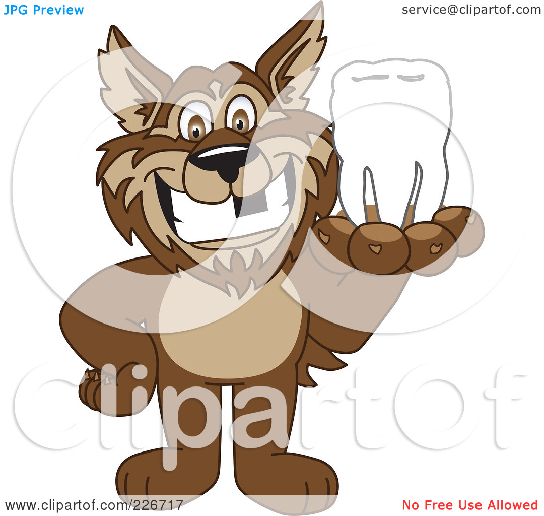 Free  Rf  Clipart Illustration Of A Wolf School Mascot Holding A Tooth