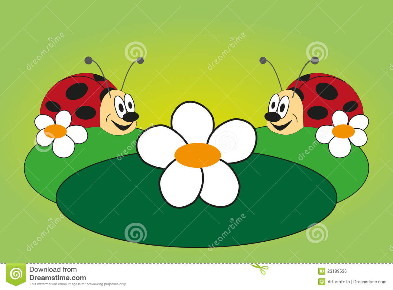 Funny Picture Of Two Ladybug Royalty Free Stock Image   Image
