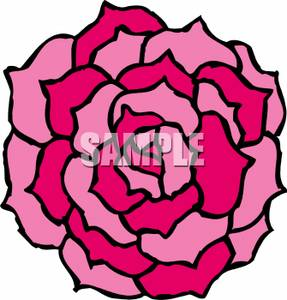 Clip Art Carnation Clip Art pink carnation clipart kid royalty free picture
