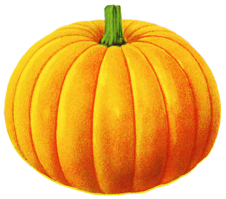 Clip Art Pumpkin Clipart Free pumpkin free clipart kid so i m also including this image separate