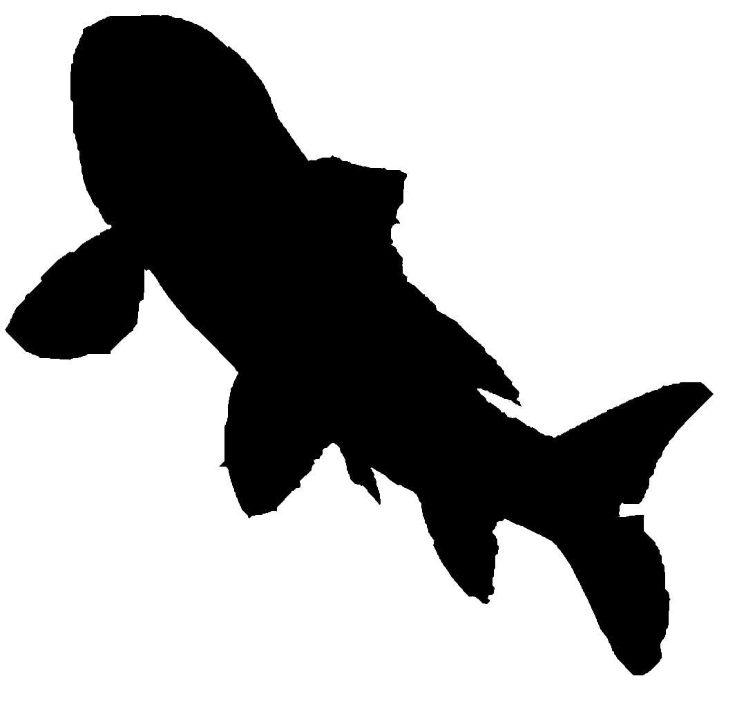 Fish Silhouettes