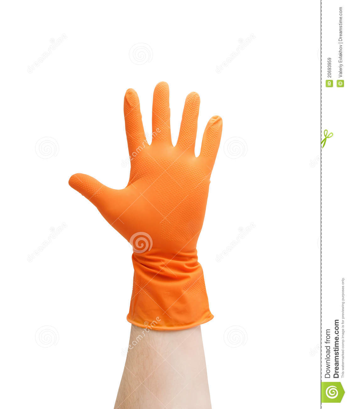 Hand In Glove Isolated Royalty Free Stock Images   Image  20693959