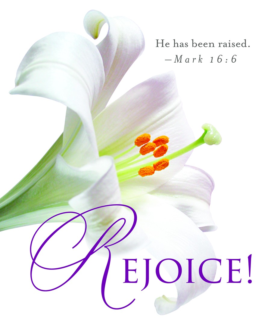 Rejoice  Easter Lilies Bulletin Large   Cross Way Christian Supply