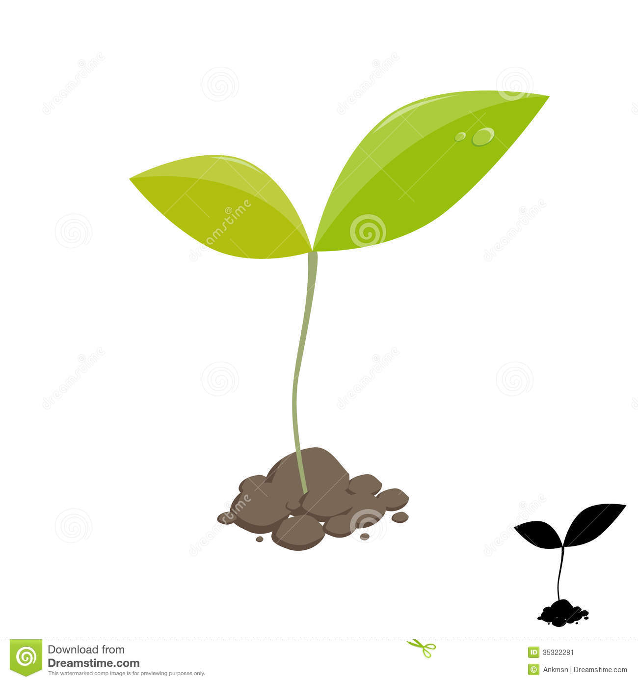 Sprouting Seed Clipart Little Plant Sprout Stock