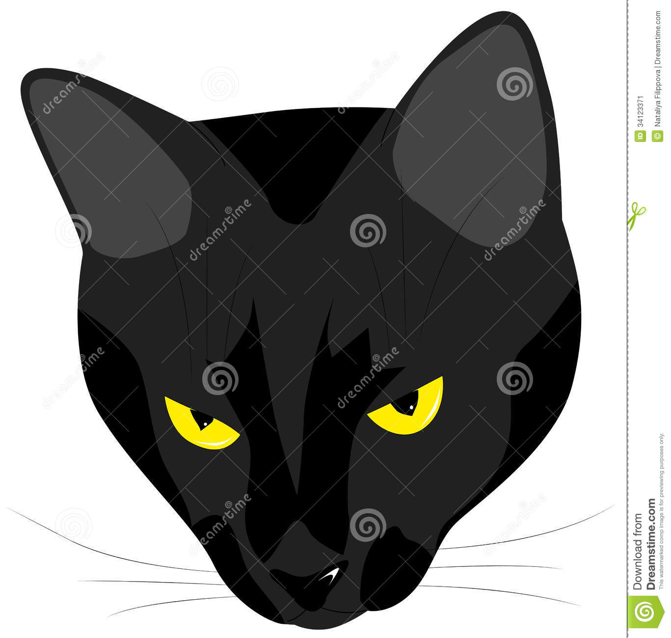 The Muzzle Of The Evil Black Cat Stock Image   Image  34123371