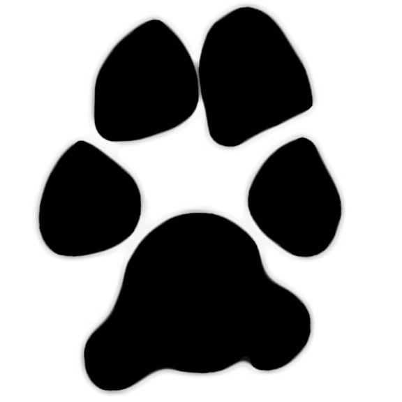 Coyote Paw Print Clipart - Clipart Kid