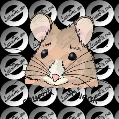 Why do mice squeak?
