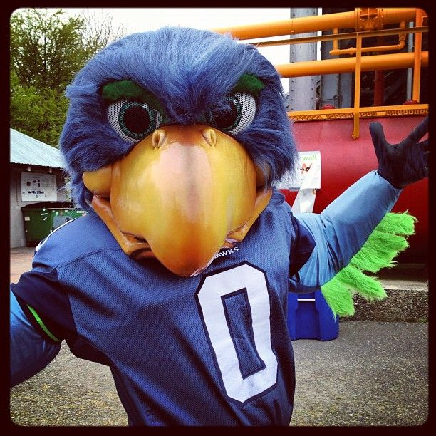 Blitz The Seattle Seahawk Mascot  A Large Blue Bird Blitz Made His