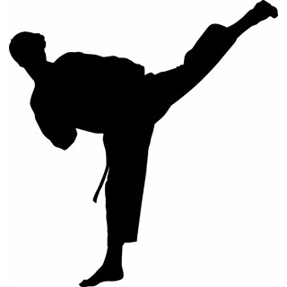 Karate Clipart   Clipart Panda   Free Clipart Images
