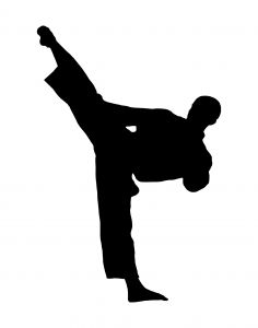 Karate Silhouette   Clipart Best