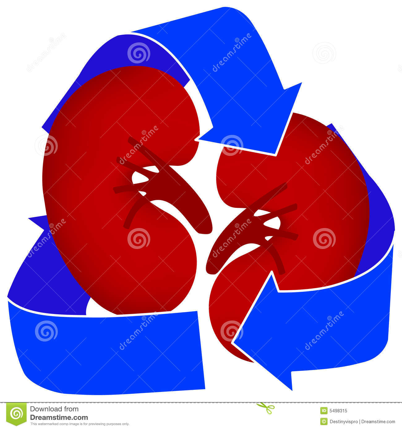 Organ Donation Or Kidney Dialysis  Clean Simple Medical Icon