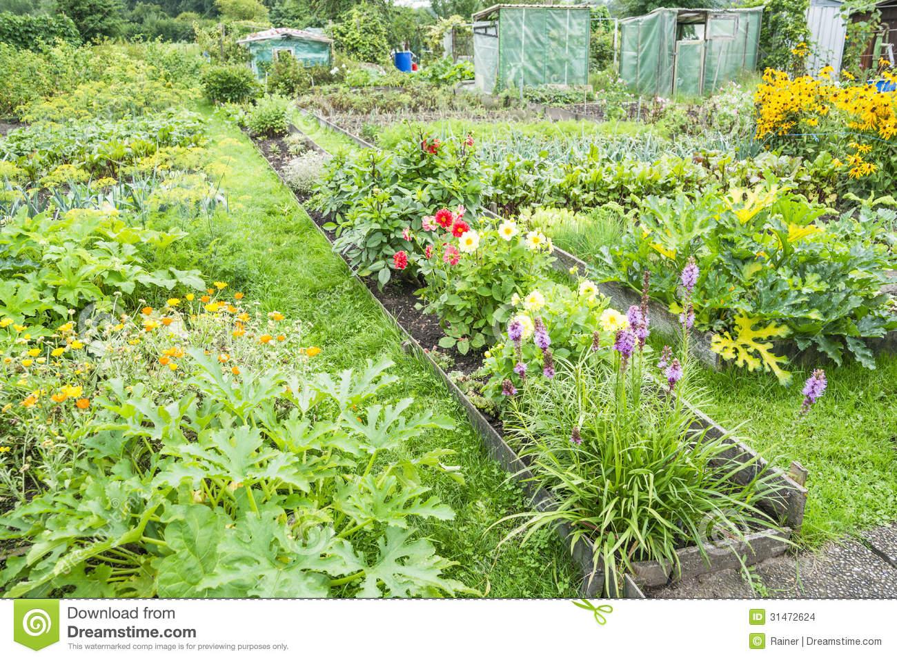 Огород схема в