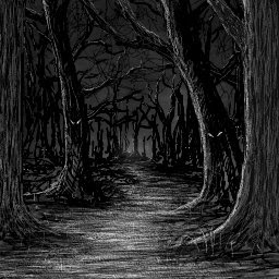 Look At This Dark And Scary Forest  What Comes To Mind