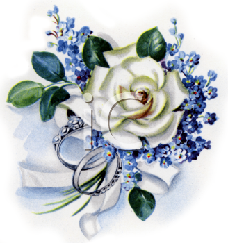 Rose Forget Me Nots And Wedding Bands   Royalty Free Clipart Picture