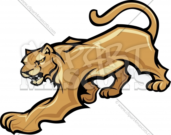Back   Gallery For   Mountain Lion Face Clip Art