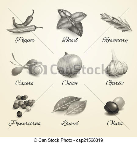 Vector   Herbs And Spices Black And White Set   Stock Illustration