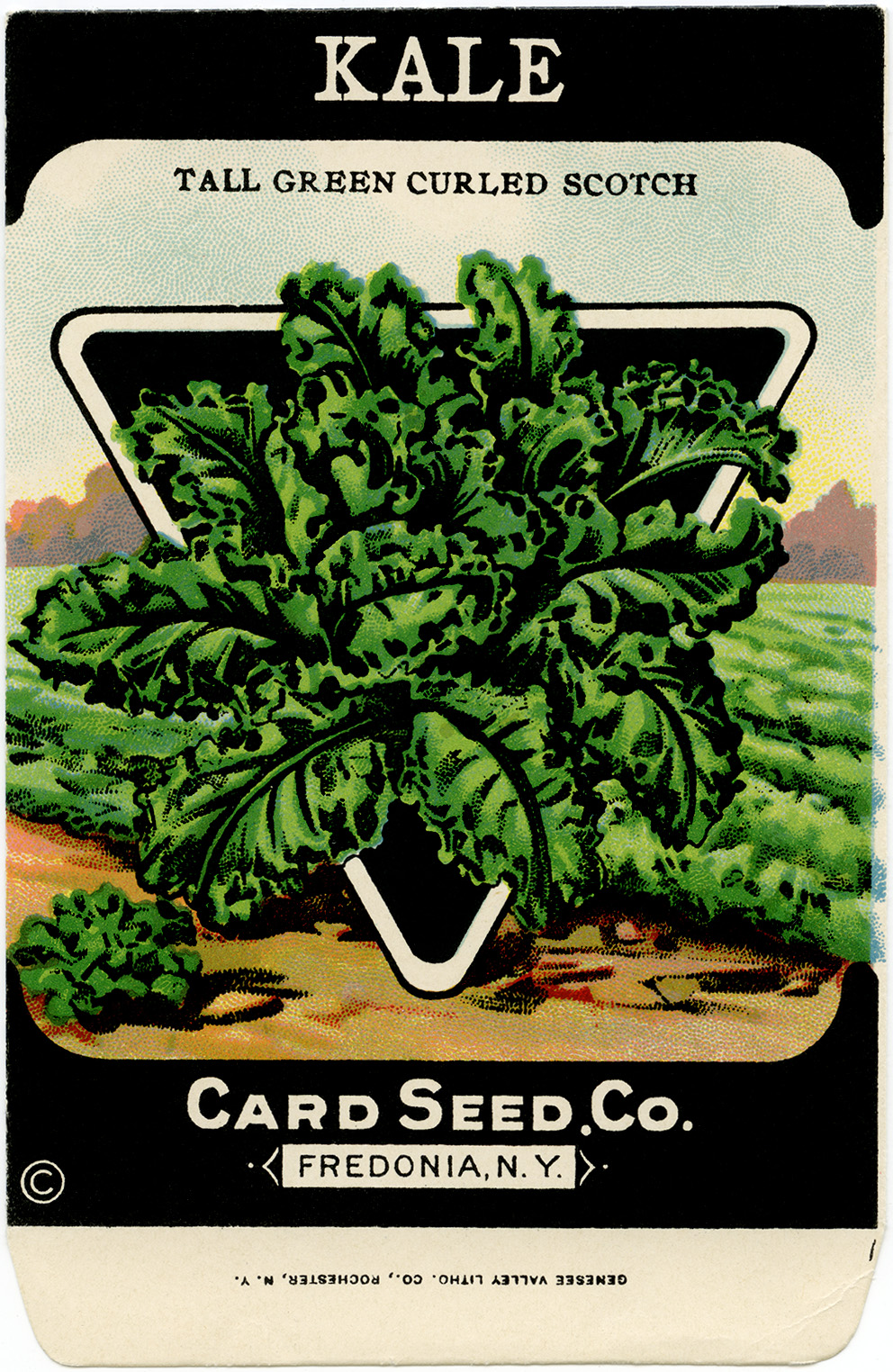 Clip Art Old Fashioned Seed Package Vintage Seed Packet Kale Garden