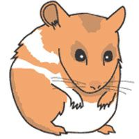 Clipart Hamster More Clipart Hamsters Art Gallery Hamsters Art
