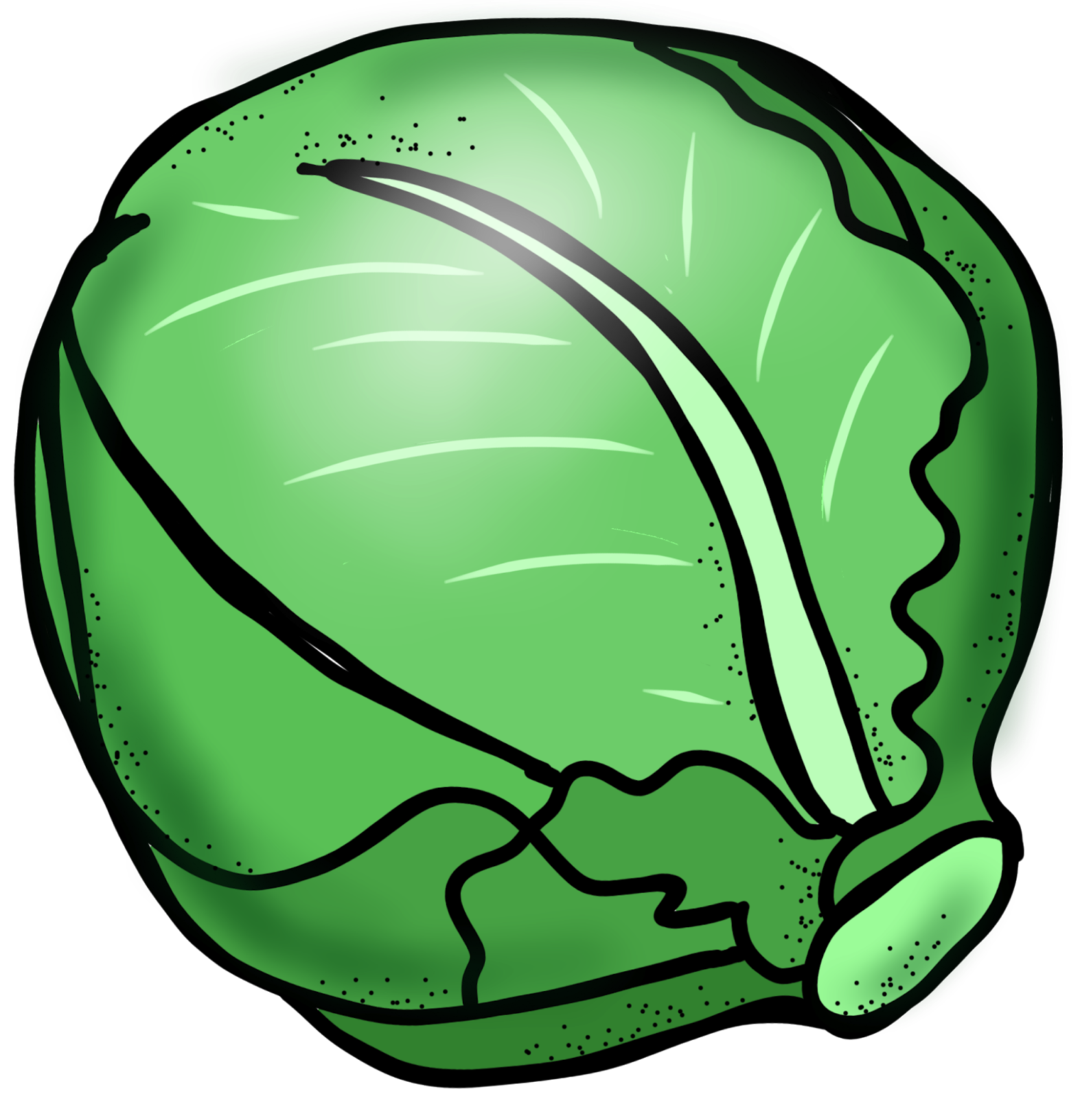 Cabbage Clipart - Clipart Suggest
