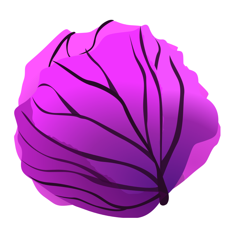 Purple Cabbage Clipart - Clipart Suggest
