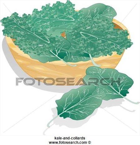 Stock Illustration   Kale And Collards  Fotosearch   Search Clip Art