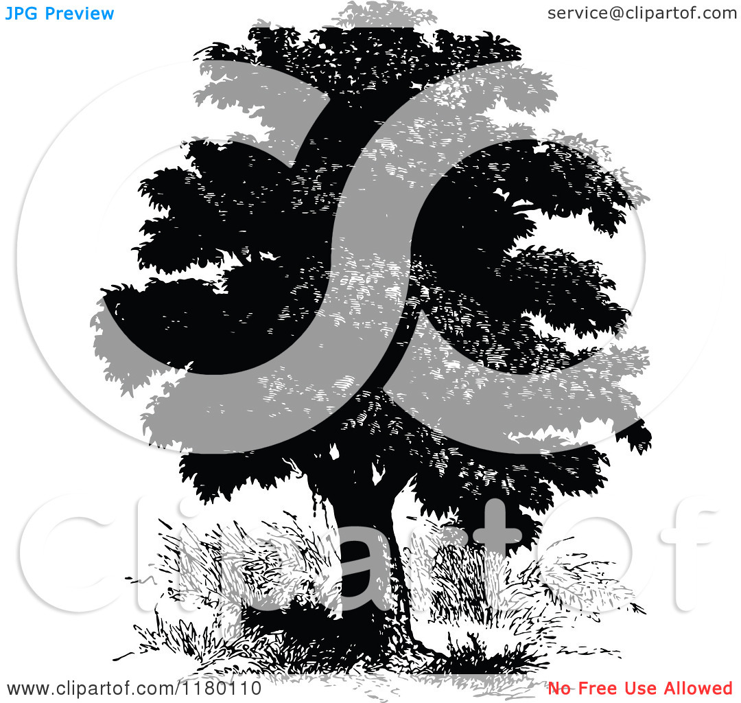 Clipart Of A Retro Vintage Black And White Bread Fruit Tree Royalty