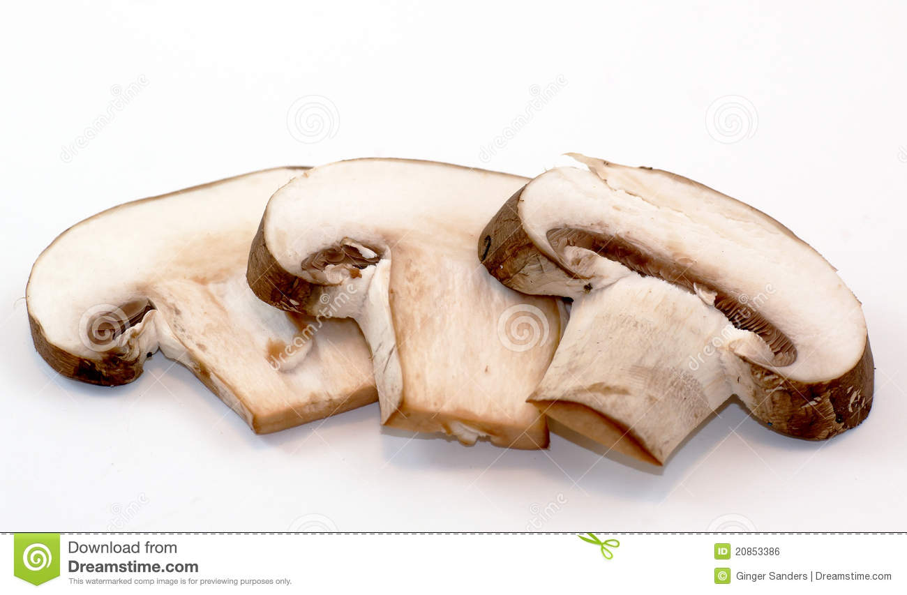 Mushroom Slice Clipart - Clipart Suggest