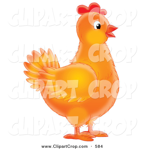 Clip Art Of A Orange Female Chicken In Profile And Looking To The