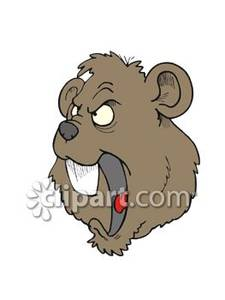 Angry Cartoon Beaver Face   Royalty Free Clipart Picture