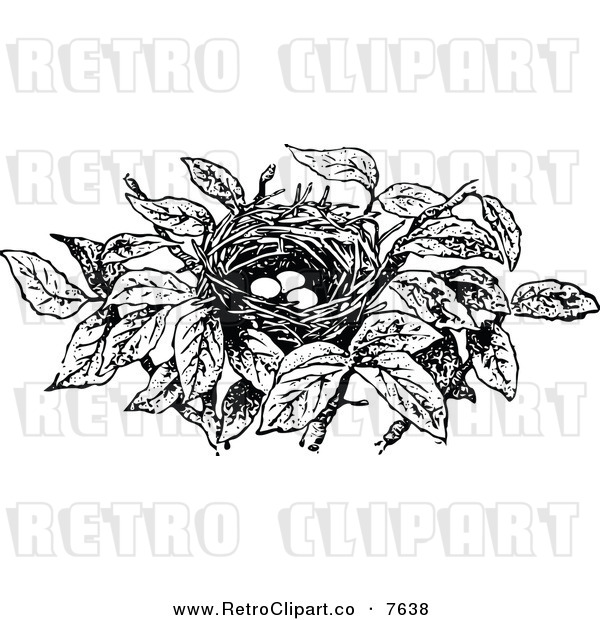 Vector Clipart Of A Retro Black And White Bird Nest With Eggs By