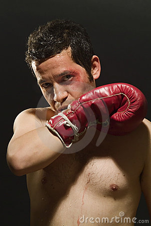 Boxer With Red Gloves And Shorts Shadow Boxing And Posing