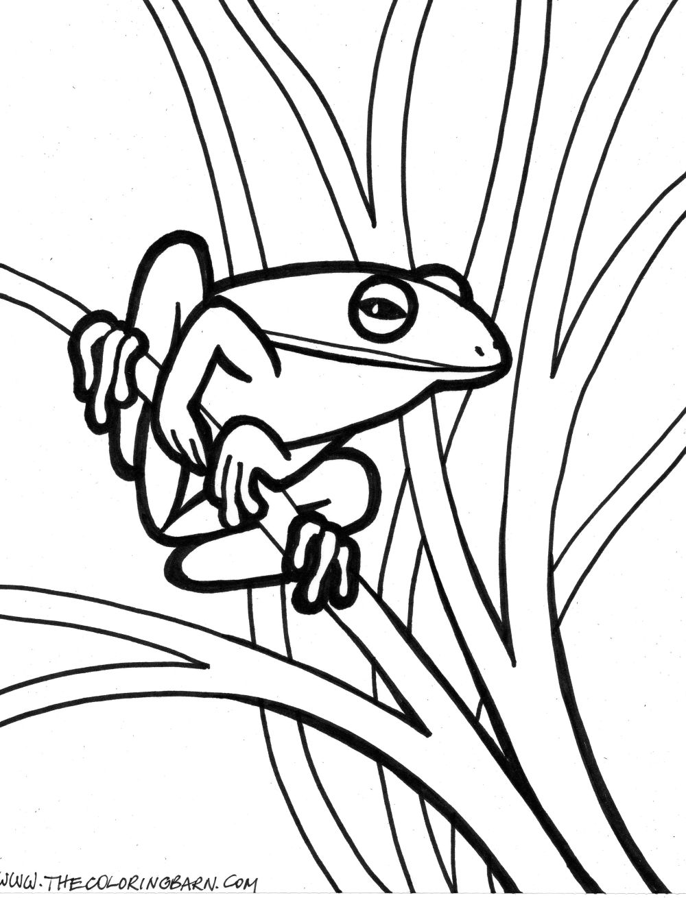 Realistic outlines coloring pages for Outline coloring pages