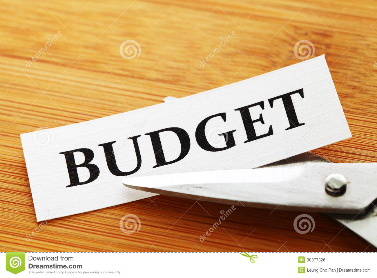 Budget Cut Royalty Free Stock Image   Image  30977326