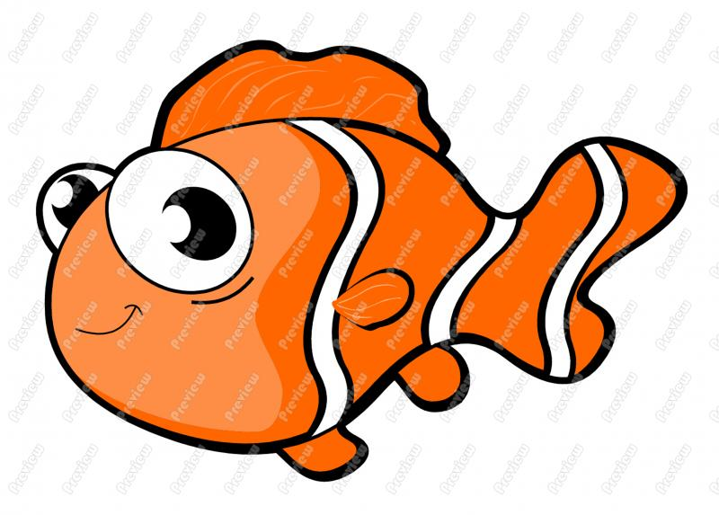 Clown Fish Pictures Free Quality Clipart   Free Clip Art Images