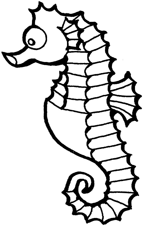 Sea Horse Clipart - Clipart Kid