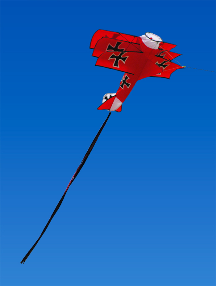 Costco Dragon Kite Image Search Results