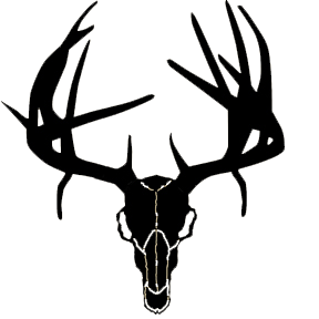 Deer Skull Clipart   Clipart Panda   Free Clipart Images