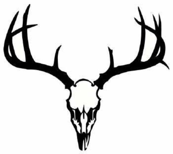 Elk Skull Clipart - Clipart Kid