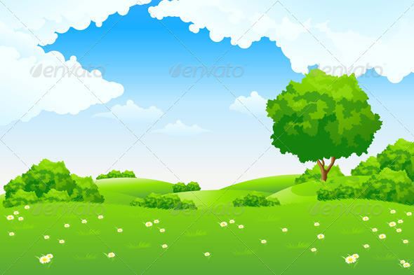 Green Landscape   Landscapes Nature