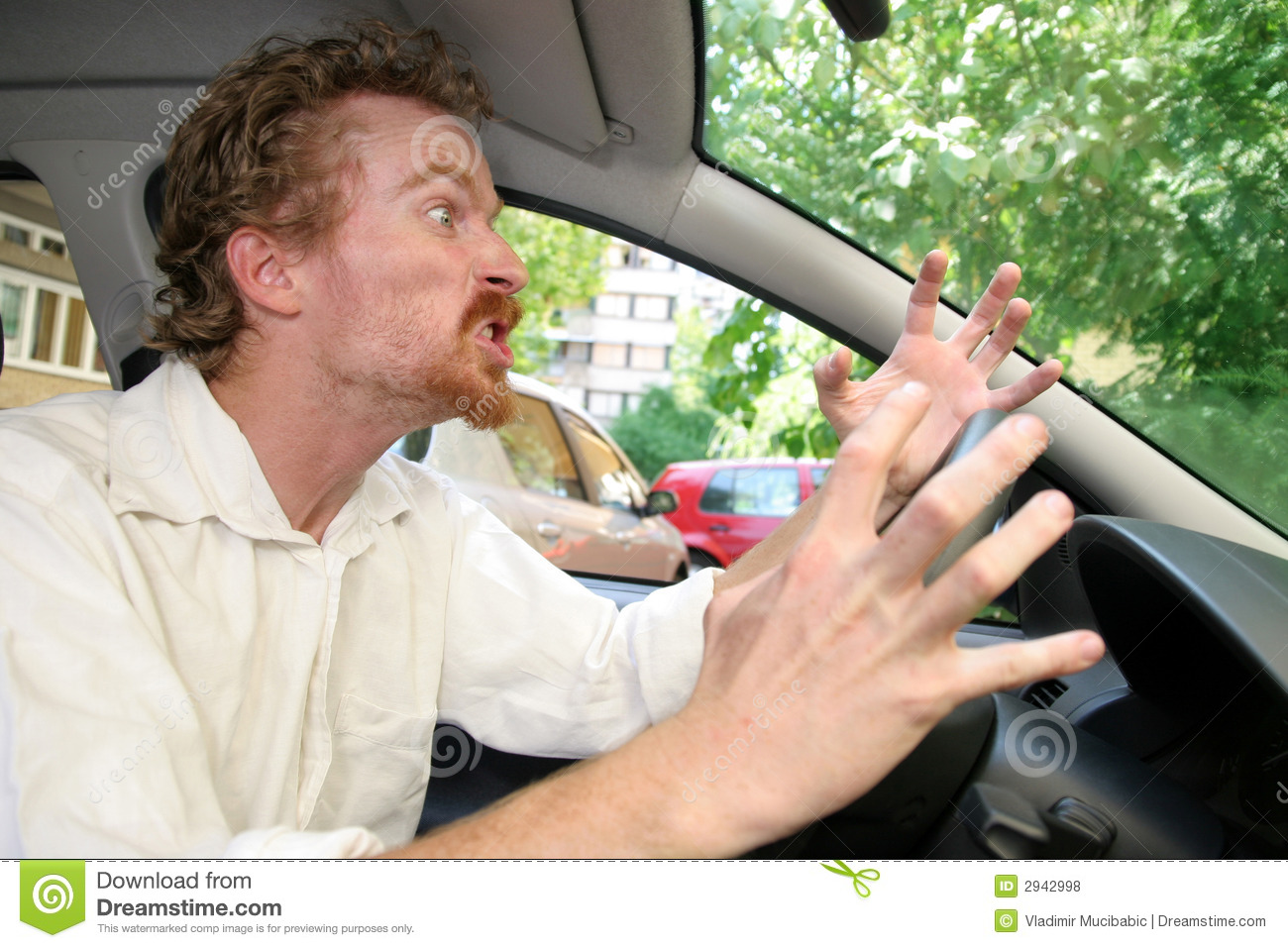 Angry Driver Royalty Free Stock Photos   Image  2942998