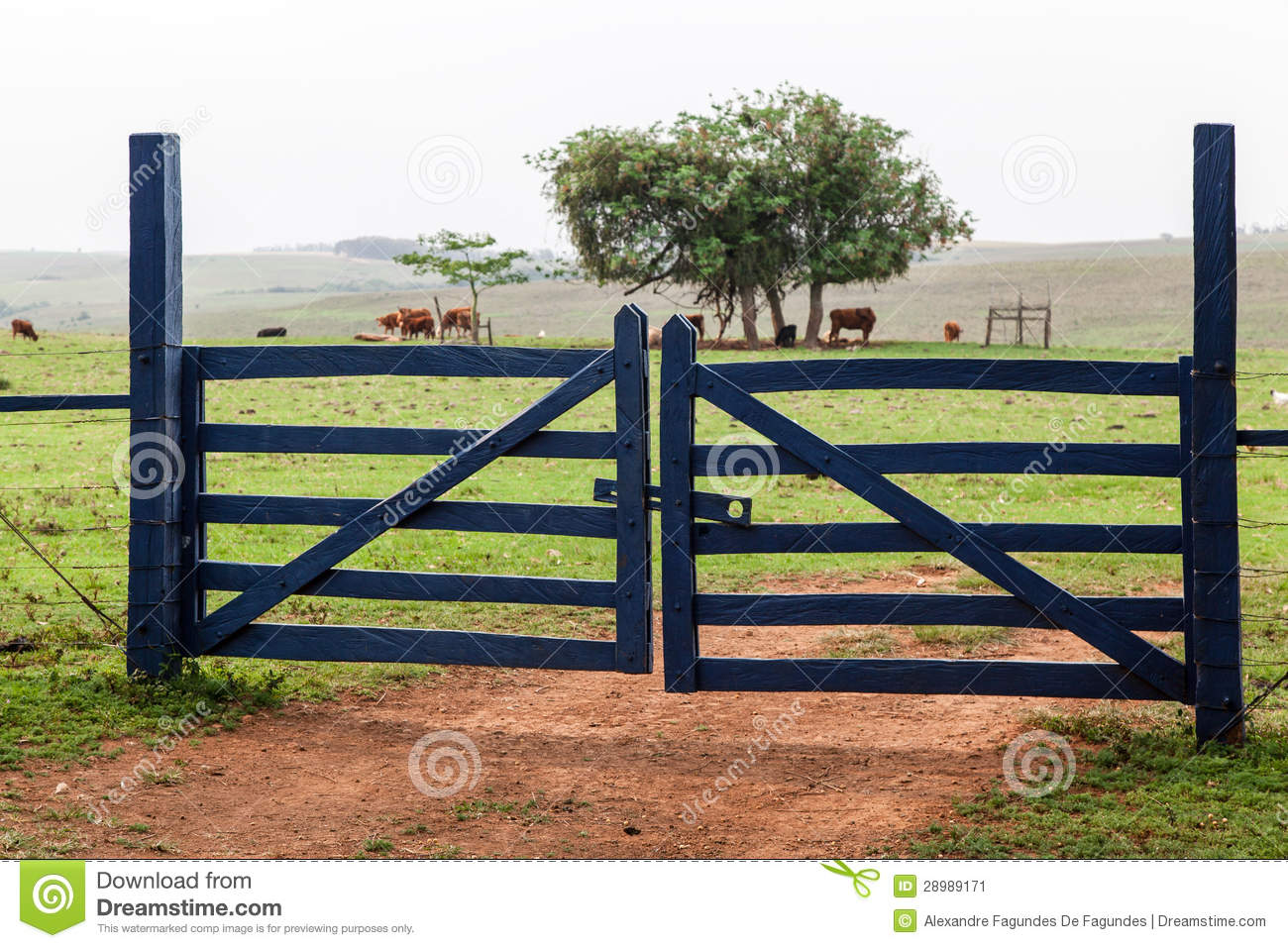 Farm Gate Stock Image   Image  28989171